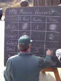 Moose Scoreboard at the Island Pond, Vermont reporting station