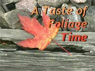 A taste of foliage time