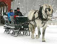 Gentle Giants Sleigh Rides in Stowe