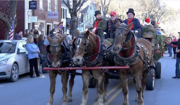 Horses and carriage at the Wassail parade in 2016